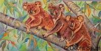 Koala Club