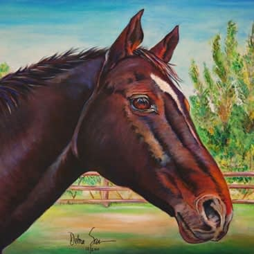 Horses & Western